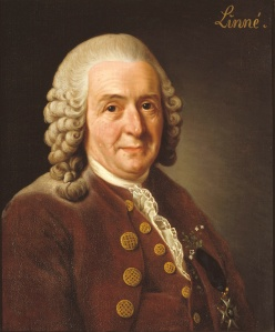 The work of Carl Linnaeus (1707-1778) inspired generations of scientists to explore the world.